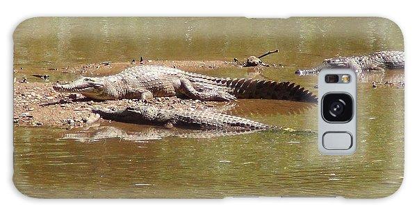 Windjana Crocodiles Galaxy Case