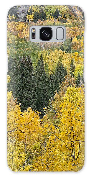 Window To Autumn Splendor Galaxy Case