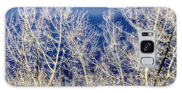 Windy Trees 12999 Galaxy Case