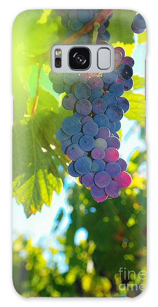 Wine Grapes  Galaxy Case by Jeff Swan