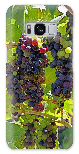 Wine On The Vine Galaxy Case