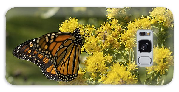 Wings - Monarch On Goldenrod Galaxy Case