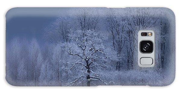 Sweden Galaxy Case - Winter by Allan Wallberg
