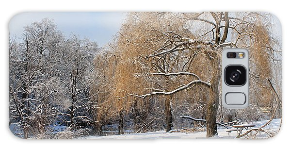 Winter Along The River Galaxy Case by Nina Silver