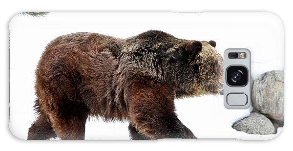 Grizzly Bears Galaxy Case - Winter Bear Walk by Athena Mckinzie