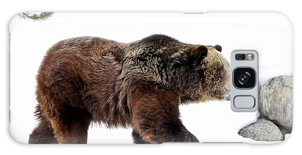 Winter Bear Walk Galaxy Case by Athena Mckinzie