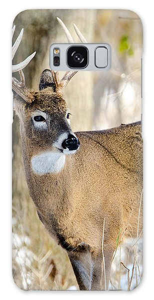 Galaxy Case featuring the photograph Winter Buck by Steven Santamour