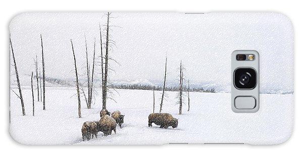 Winter Buffalo Galaxy Case