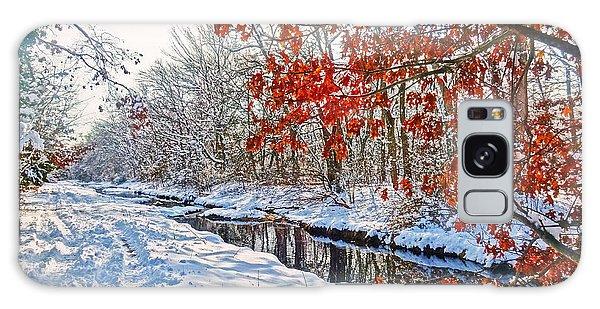 Winter Colors Galaxy Case