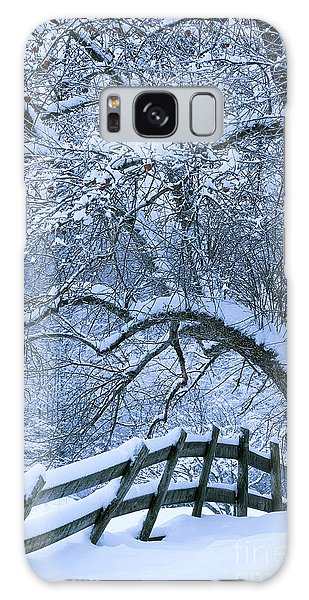 Winter Fence Galaxy Case by Alan L Graham