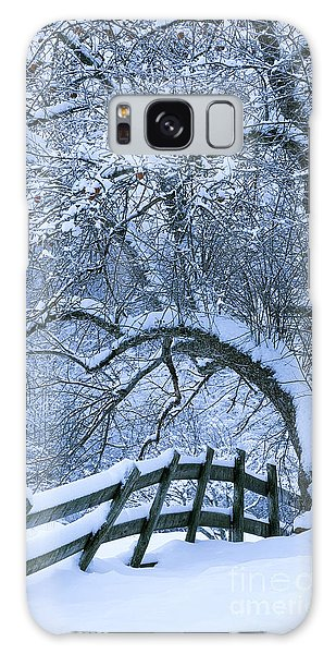 Winter Fence Galaxy Case