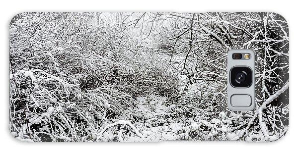 Winter Field Galaxy Case by Crystal Hoeveler