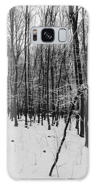 Winter Forest Galaxy Case by Eva Csilla Horvath
