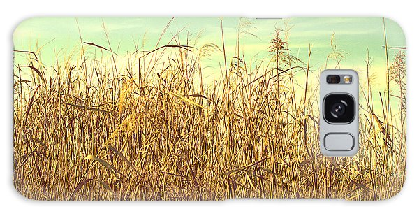 Winter Grass Galaxy Case by Rachel Mirror
