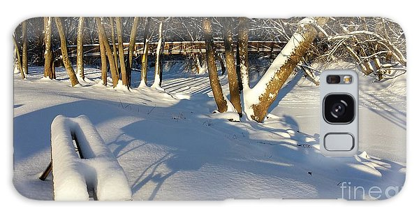 Winter In The Park Galaxy Case