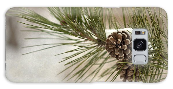 Pine Branch Galaxy Case - Winter Interlude by Evelina Kremsdorf