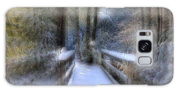 Winter Light On Bridge Galaxy Case