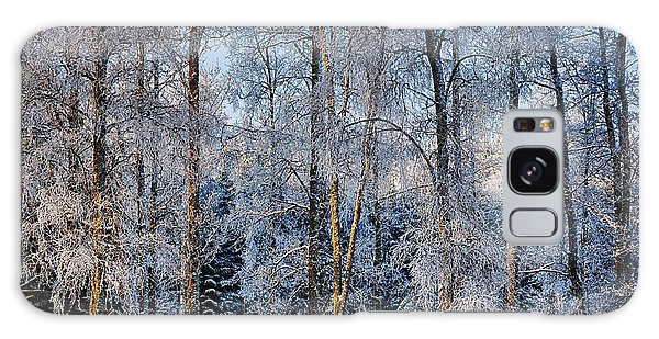 Winter Nature Ans Scenery Galaxy Case by Christian Lagereek