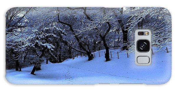 Winter Not Gone Galaxy Case by Tim Ernst