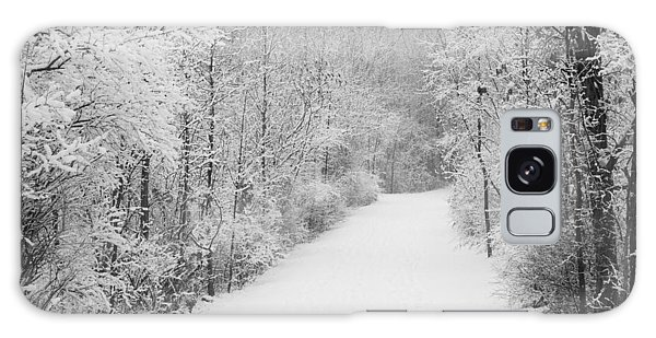 Winter Pathway Galaxy Case