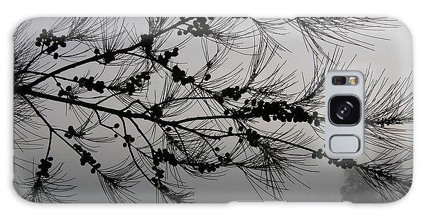 Winter Pine Branch Galaxy Case
