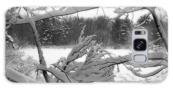 Winter Pond Galaxy Case by Kathi Mirto