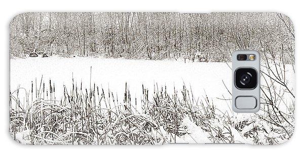 Winter Pond Galaxy Case