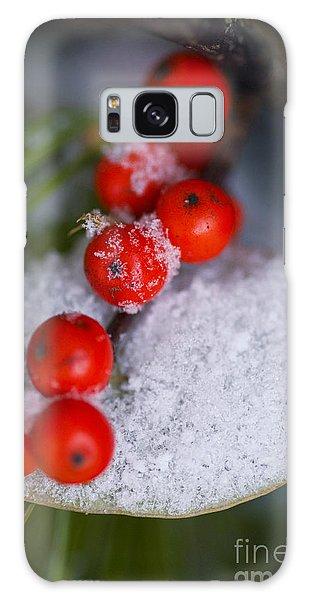 Winter Red Berries Galaxy Case by Birgit Tyrrell