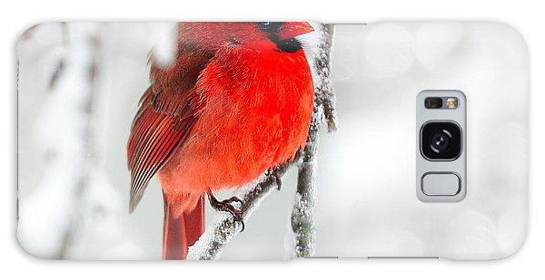 Winter Red Galaxy Case by Jaki Miller