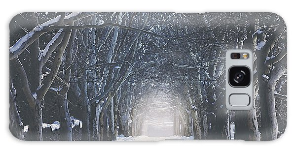 Tree Galaxy Case - Winter Road by Carrie Ann Grippo-Pike