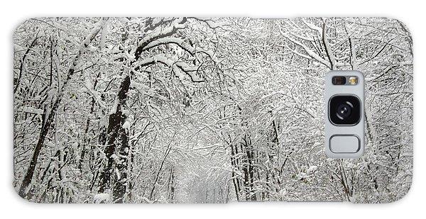 Winter Scene 2 Galaxy Case