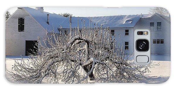 Winter Sculpture Galaxy Case