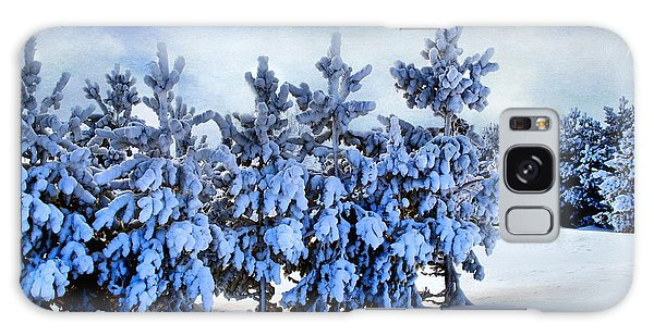 Winter Serenity  Galaxy Case by Andrea Kollo