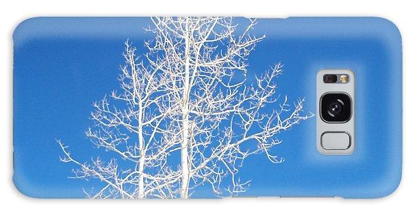 Winter Sky Galaxy Case