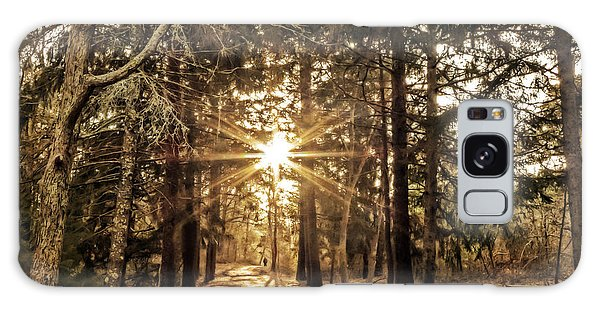 Winter Solstice Walk Galaxy Case