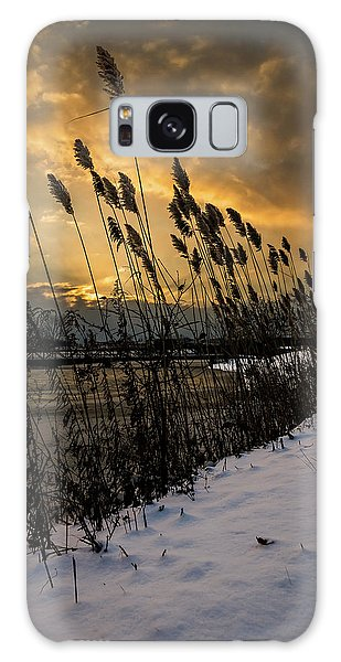 Winter Sunrise Through The Reeds Galaxy Case