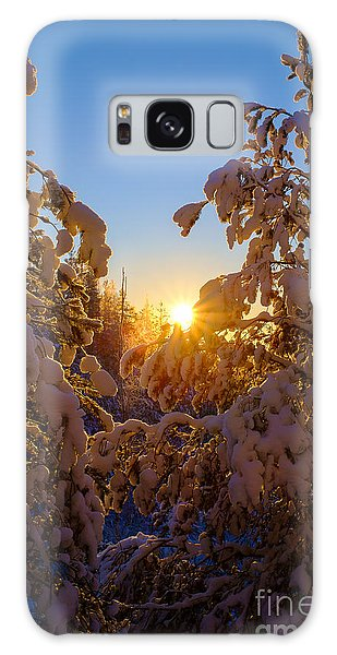 Winter Sunset Behind The Trees Galaxy Case