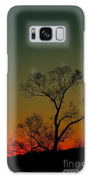 Winter Tree At Sunset Galaxy Case