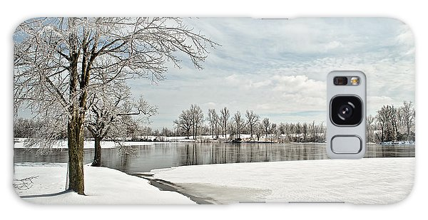 Winter Tree At The Park 2 Galaxy Case by Greg Jackson