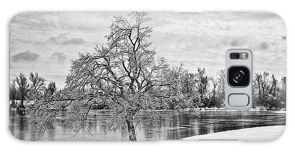 Winter Tree At The Park  B/w Galaxy Case