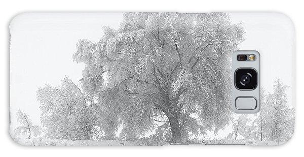 Winter Tree Galaxy Case