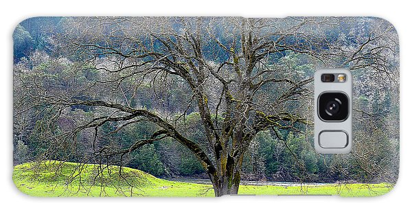 Winter Tree With Cows By The Umpqua River Galaxy Case