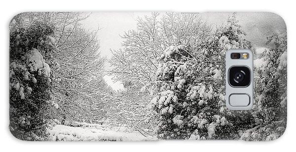 Winter Wonderland With Filmic Border Galaxy Case