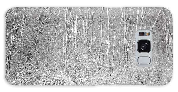 Winter Wood 2013 Galaxy Case