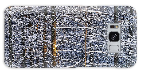 Winter Woods Galaxy Case by Alan L Graham
