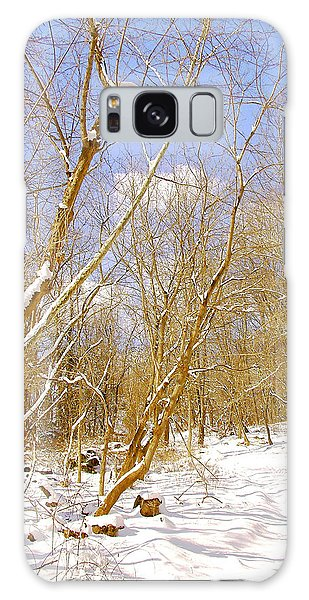 Galaxy Case - Winter Woods Digital Art by A Gurmankin