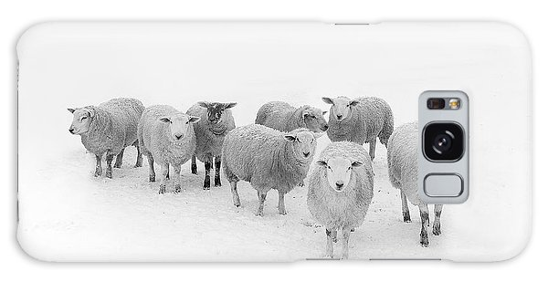 Sheep Galaxy Case - Winter Woollies by Janet Burdon