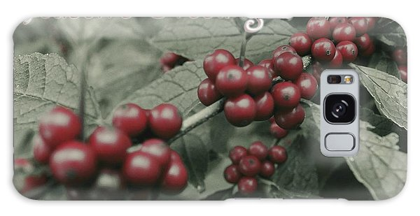 Winterberry Greetings Galaxy Case by Photographic Arts And Design Studio