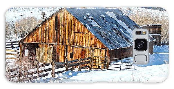 Wintering Range Barn Galaxy Case