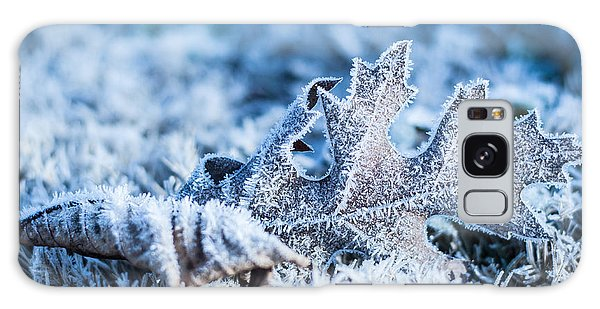 Winter's Icy Grip Galaxy Case